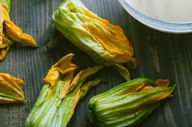 varieta zucchine