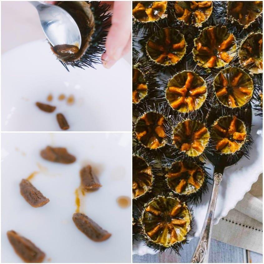 Come pulire i ricci di mare