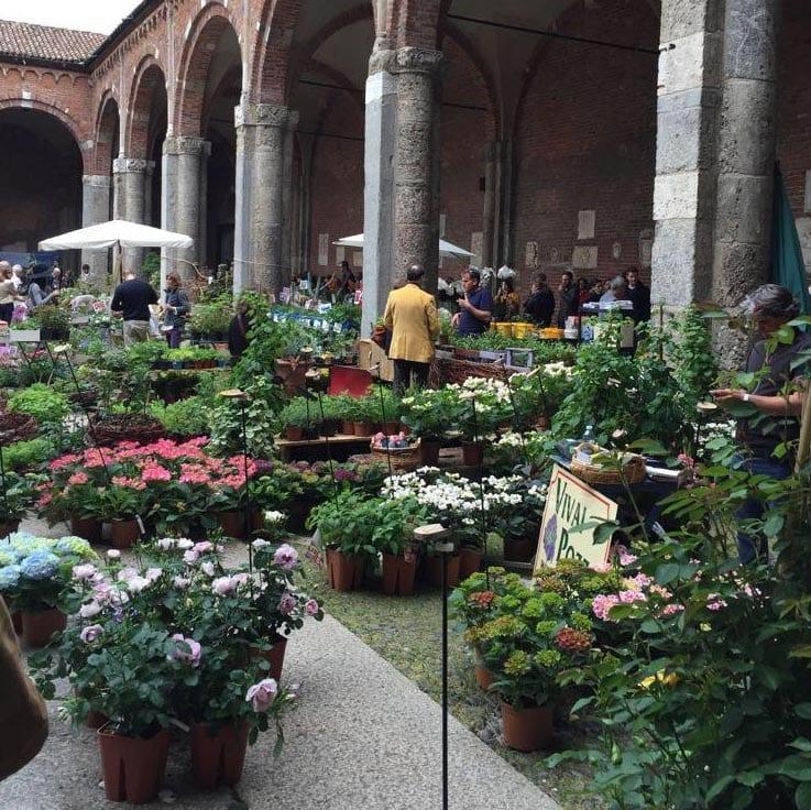 mercato_fiori_Sant_Ambrogio