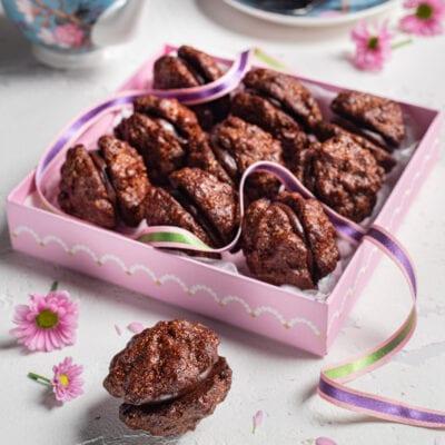 scatola con piccoli biscotti al cioccolato